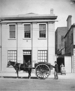 Brewery Horse & Cart